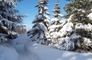 Altenber_Winter_10