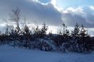 Altenber_Winter_17